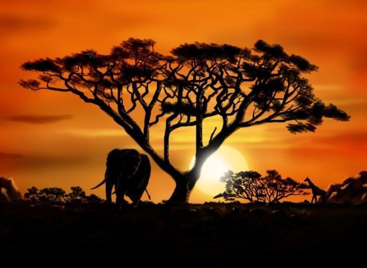 Cuestiones de salud para viajar a Africa