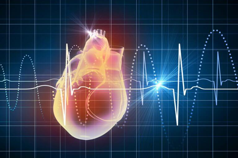 Visualización de ecocardiograma