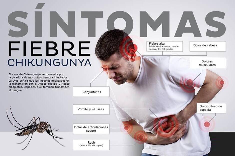 Conoce los síntomas de la fiebre chikungunya