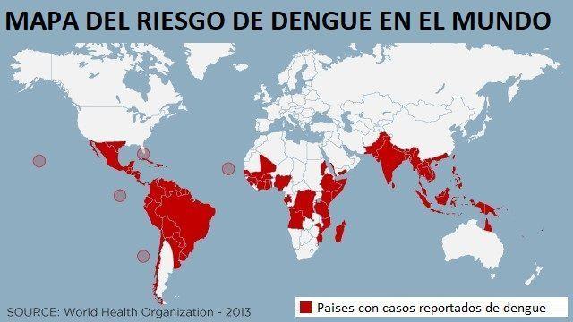 Mapa del Dengue: en qué regiones del mundo hay mayor riesgo