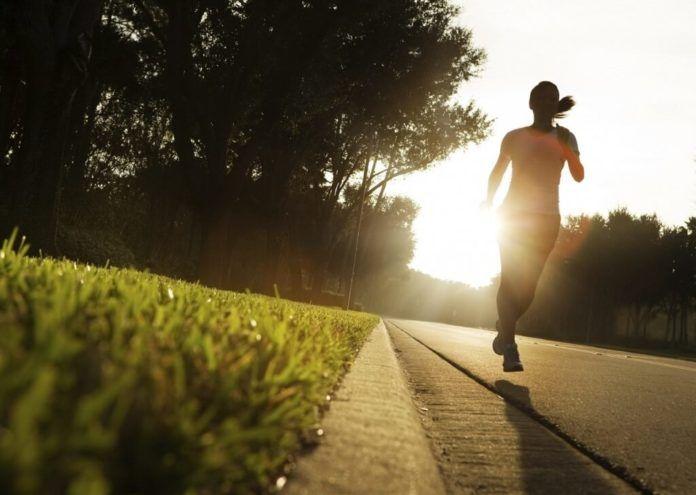 Todo sobre la nutrición y el deporte