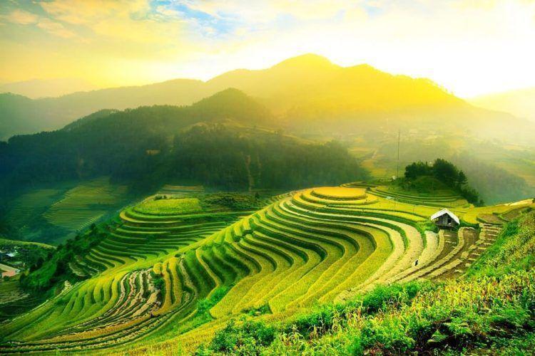 Cuidá tu salud en un viaje a Asia