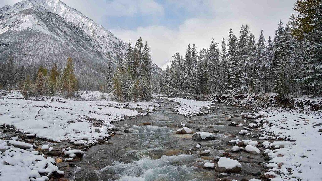 Siberia, Rusia – El frío en Rusia es una de las mayores amenazas