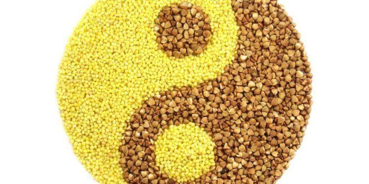 Alimentación macrobiótica, equilibrio y salud
