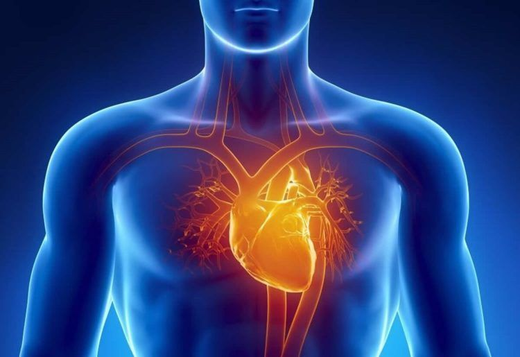 Miocardiopatía, todo lo que necesitas saber